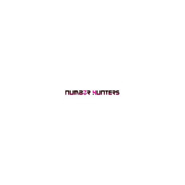 Number Hunters (NUMH)