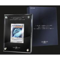 Yu-Gi-Oh! Masterpiece Series - Platinum Blue-Eyes White Dragon Silber Metallkarte