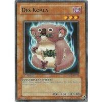 Des Koala