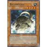 Ballonechse