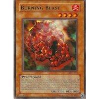 Burning Beast