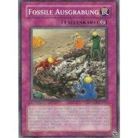 Fossile Ausgrabung