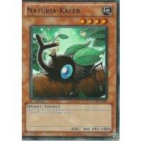 Naturia-Käfer