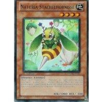 Naturia-Stachelhornisse