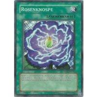 Rosenknospe