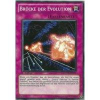 Brücke der Evolution