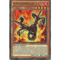 V-Salamander