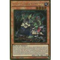 Fallenstellerin Dionaea