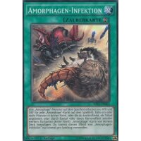 Amorphagen-Infektion
