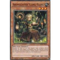 Aromagister Ylang-Ylang