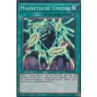 Magnetische Umkehr