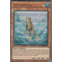 Baumfrosch