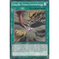 Große Evolutionspille