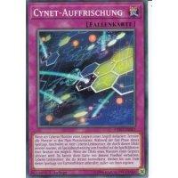 Cynet-Auffrischung