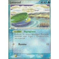 Loturzel 66/100