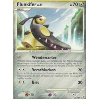 Flunkifer