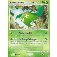 Burmadame (Pflanzenumhang)