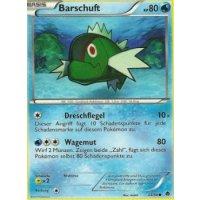 Barschuft 24/98