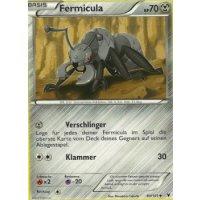 Fermicula 83/101