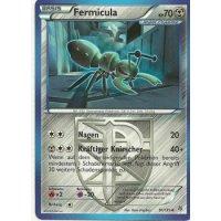 Fermicula 91/135