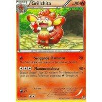 Grillchita 20/135
