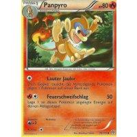 Panpyro 16/135
