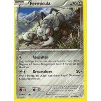 Fermicula 61/106