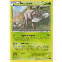 Fermicula 9/122