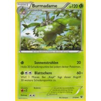 Burmadame 3/124