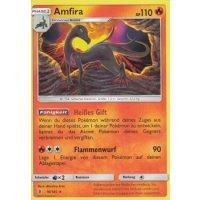 Amfira 16/145
