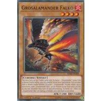 Grosalamander Falko
