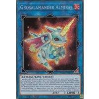 Grosalamander Almiraj