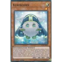 Kuribohrn