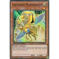 Goldener Marienkäfer