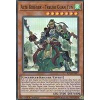 Alte Krieger - Treuer Guan Yun
