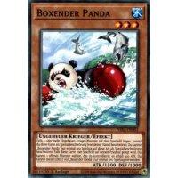 Boxender Panda