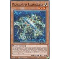 Digitalkäfer Registläufer