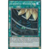 Achtheits-Wasserlilie